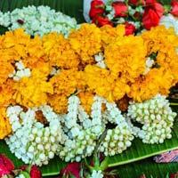 Fresh Puja Flowers