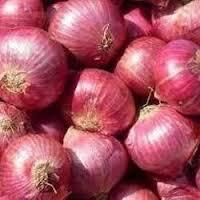 Farm Fresh Onion