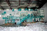 Paddy Rice Milling Euipment