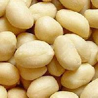 Hps Groundnuts