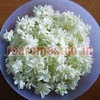 Jasmine Floral Water