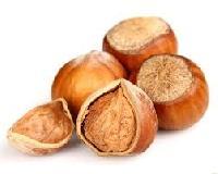 Hazelnut