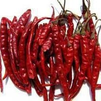 Dried Red Chilli Teja S17 With Stem
