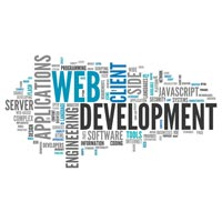 Website Development Service