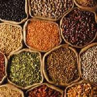 Food Grain Pulses