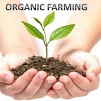 Land For Organic Farming