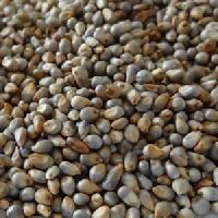 High Quality Green Millets
