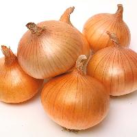 Indian Onion