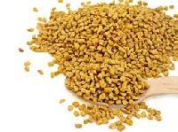 Supreme Quality Fenugreek Seeds