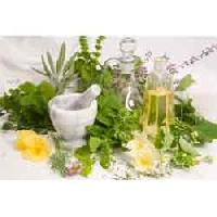 Herbal Fragrance