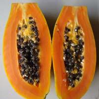 Fresh Pusa Dwarf Papaya