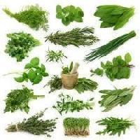 Crude Herb