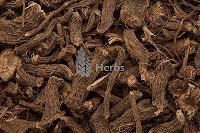 Sweet myrtle - Acorus Calamus