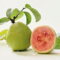 Pink Guava Fruits