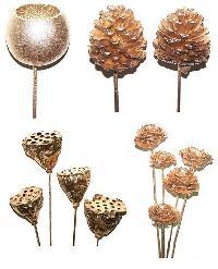 Dried Exotics Flower