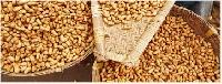 Groundnut Extraction