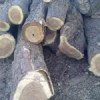 Neem Wood Cut Size