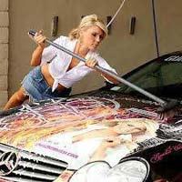 Bio Car Cleaner