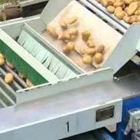 Potato Grader