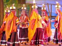 Chari Dance Program Organizer