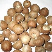 Roasted Betel Nuts