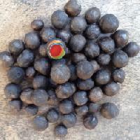 Euryale Ferox seeds