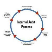 Internal And Management Audit