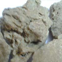 100% Natural Moringa Seed Oil Cake Exporters