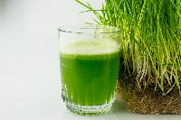 Organic Wheatgrass Juice