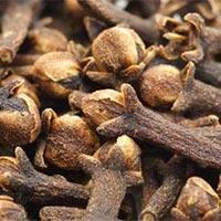 Clove Seeds
