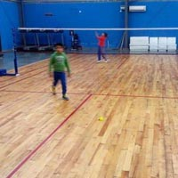 Maple Wood Multi Badminton Court Floor Installation Services