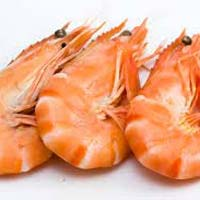 Frozen Shrimps Fish