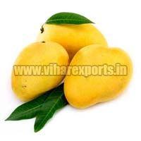 Fresh Mango Keshar(saffron)