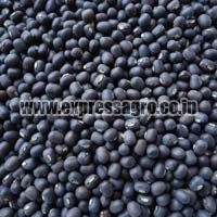 Whole Urad Dal