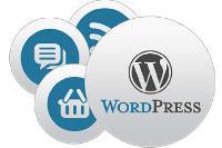 Wordpress Cms Web Development