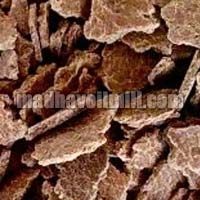 Groundnut Oil Cake Suppliers In Gujarat