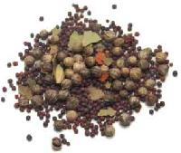 Bay Leaf Seeds