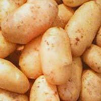 Diamond Potato