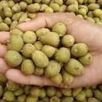 Kufri Pukhraj Potato