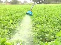Agricultural Spray Pump