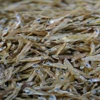 Dried Jawla Fish