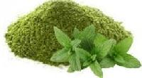 mint leaf powder