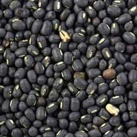 Black Whole Urad Dal