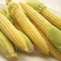 Baby Corn Unpeeled