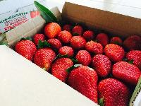 Vedanta's Farm Fresh Strawberry