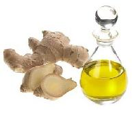 Ginger Oil, Zingiber Officinale