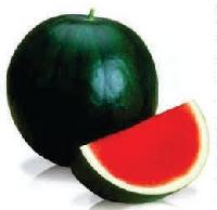 Sweet Ruhi Aswh-222 Hybrid Watermelon Seeds