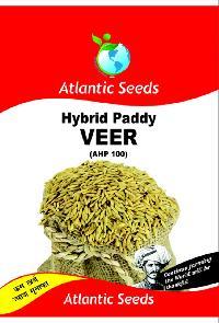 Veer Hybrid Paddy Seeds