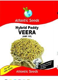 Veera Hybrid Paddy Seeds