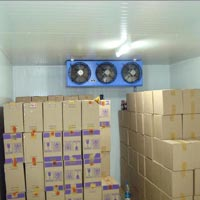 Cold Storage Services